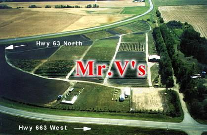 Location on Alberta map of Mr.V's Field & Forest Inc. Fruit trees and ornamental trees, apple trees - Tree nursery, plants, landscape and garden products supplier for northern Alberta, Saskatchewan and Manitoba